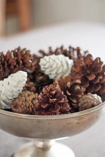 Decorative Paint-Dipped Pinecoins
