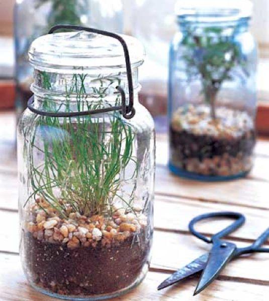Turn Your Mason Jar Into A Small Terrarium