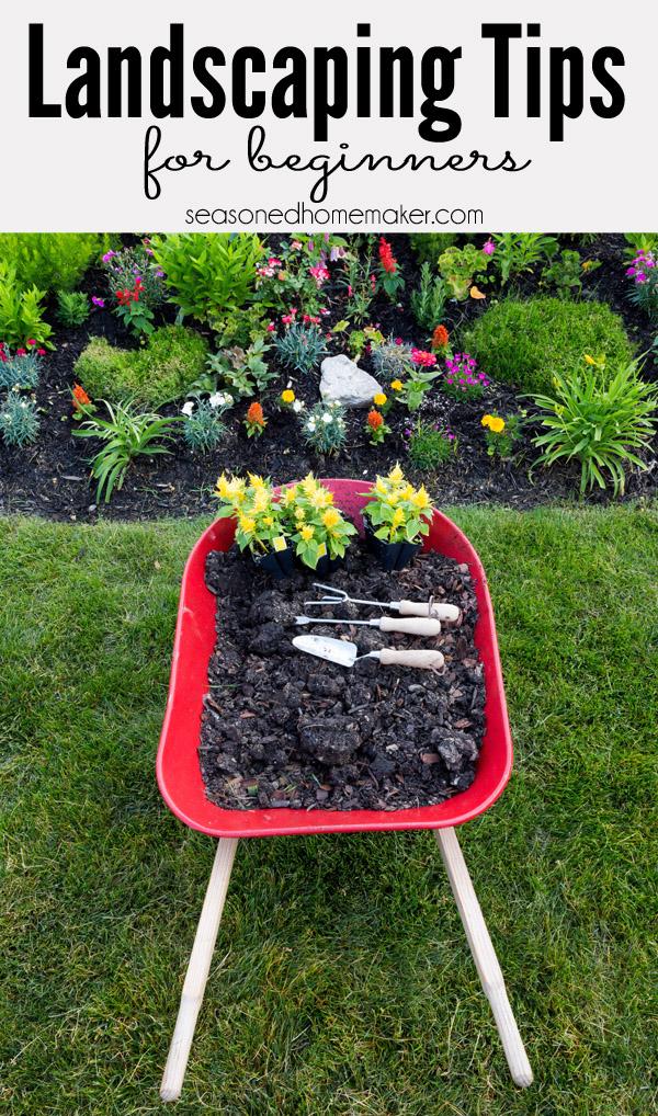 Landscaping Tips For Beginner