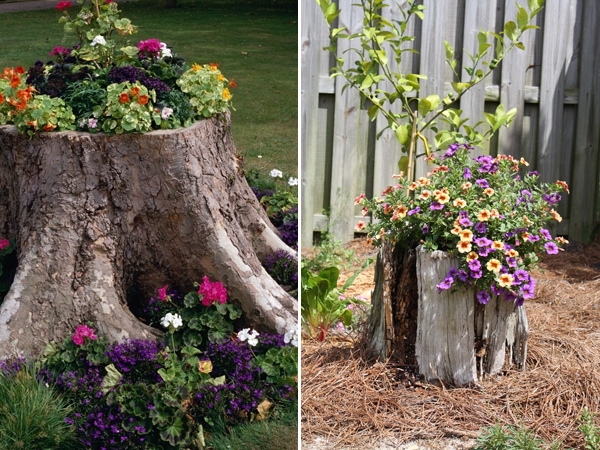 Do Not Let Old Stumps Ruin Your Garden – Make The Best Of Them Instead
