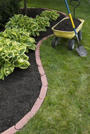 Inexpensive Landscaping Ideas For Your Yard