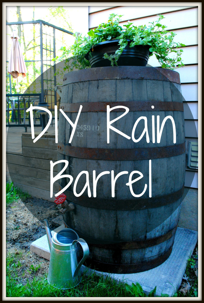 Awesome DIY Rain Barrel For Droughts
