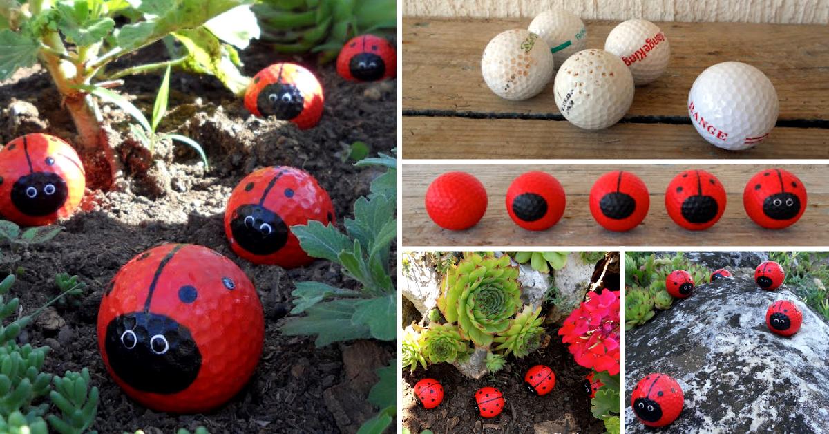 Creative Ideas DIY Cute Golf Ball Ladybugs cover