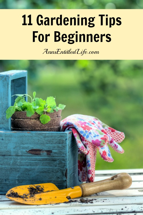 50 tips and hacks to help improve gardening page 2 of 2 - Practical tips to make money from gardening ...
