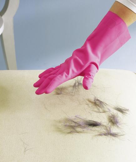 How to Clean Pet Hair From your Sofa