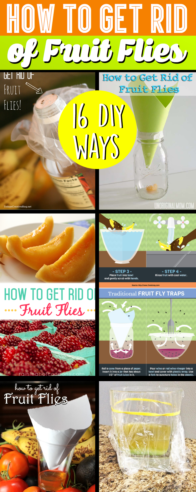 how to get rid of fruit flies u2013 cute diy projects