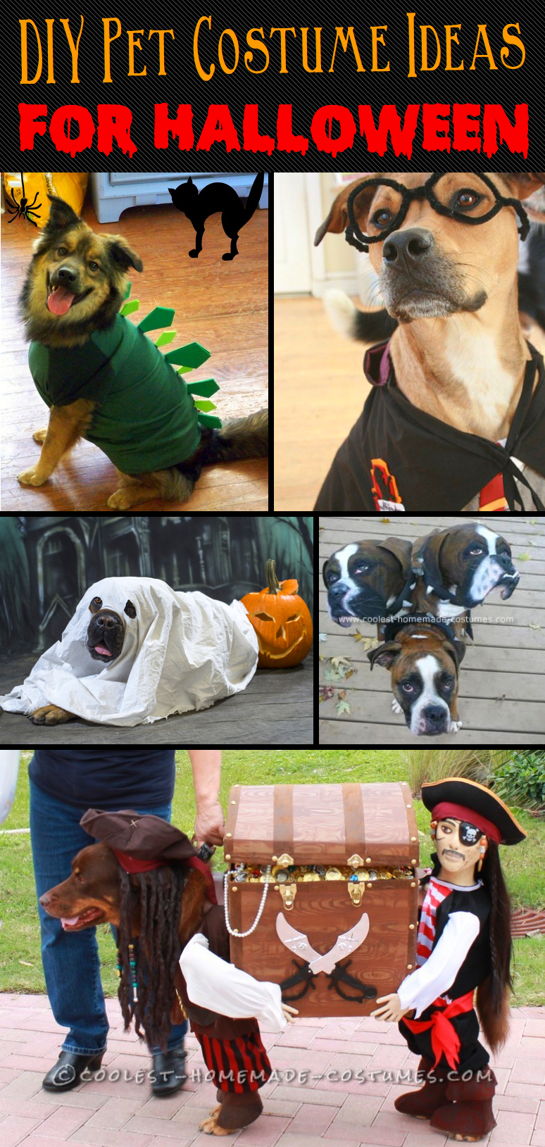 20 adorable diy pet costume ideas for halloween 2017 20 incredibly adorable yet simple diy pet costume ideas for halloween solutioingenieria Image collections