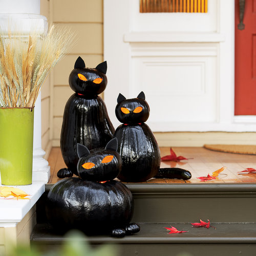 make black cat olanterns