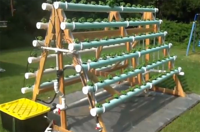 How To Build A Hydroponic Veggie Garden