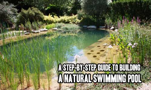 A Step-By-Step Guide to Building a Natural Swimming Pool