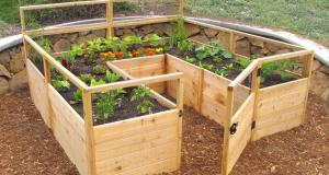 DIY Raised Garden Bed Kits