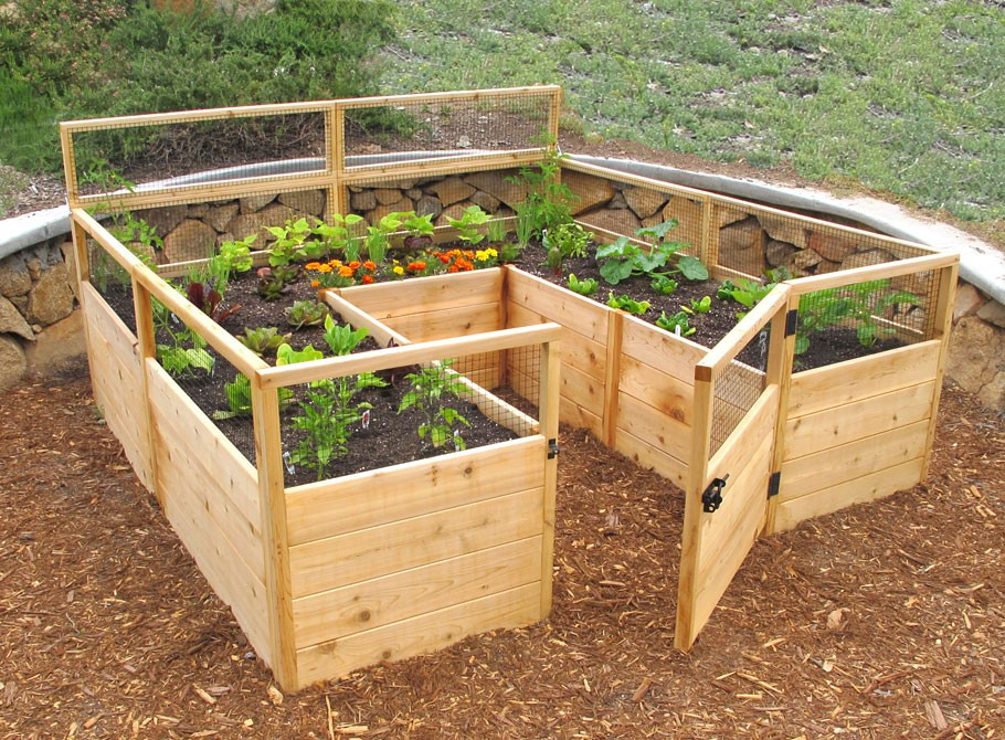 Grow your favorite fruits and veggies at home with these for Raised bed garden kits