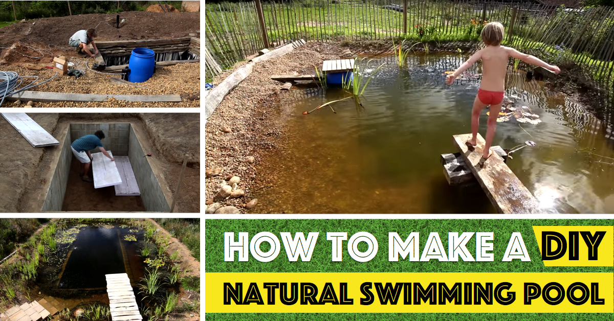 How to make a diy natural swimming pool cute diy projects Natural swimming pool builders