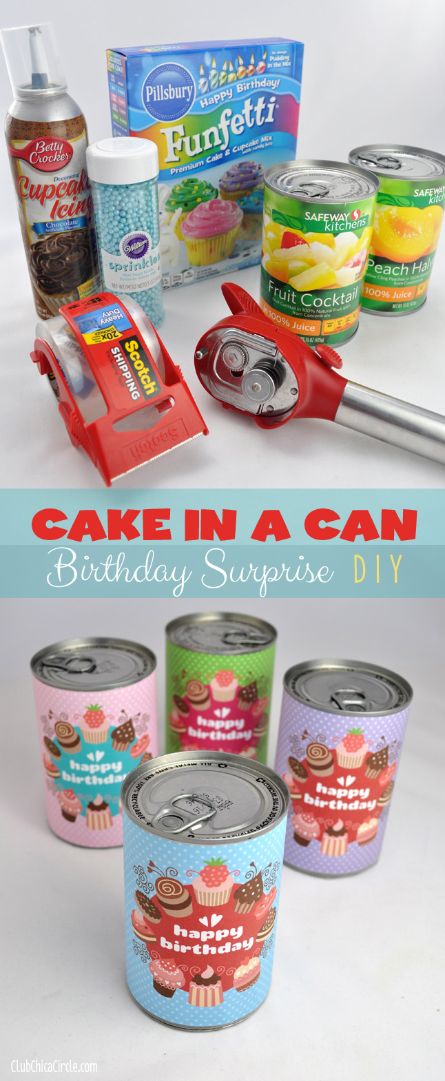Fabulous Birthday Cake In A Can Cute Diy Projects Funny Birthday Cards Online Unhofree Goldxyz