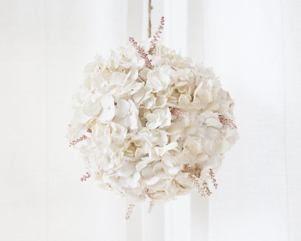 Floating Blush Hydrangea Globes