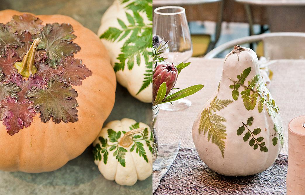 30 best fall pumpkin decorations adding unbeatable for Best pumpkins to grow