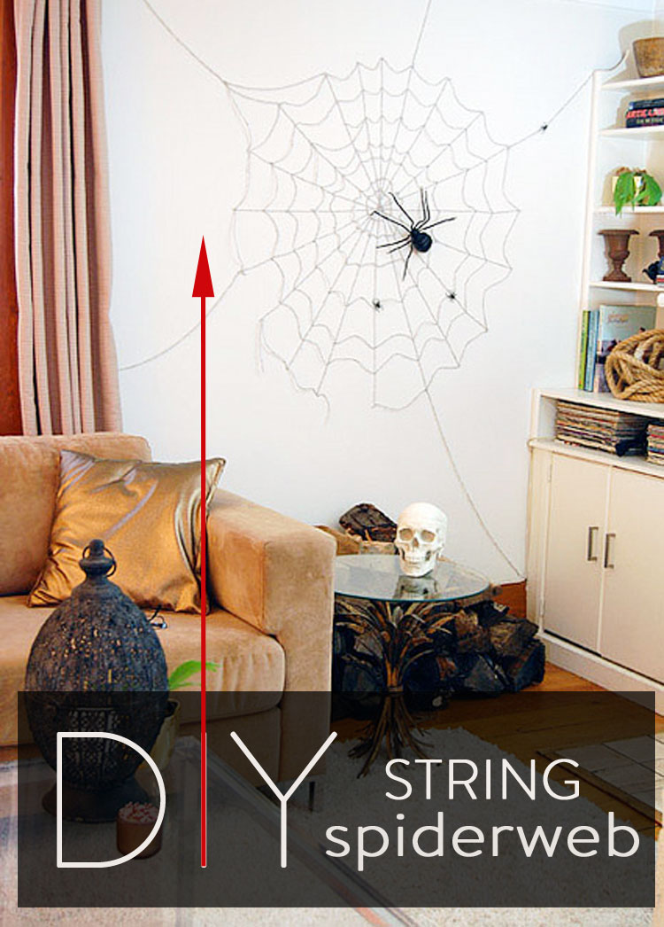 Wall Spiderweb