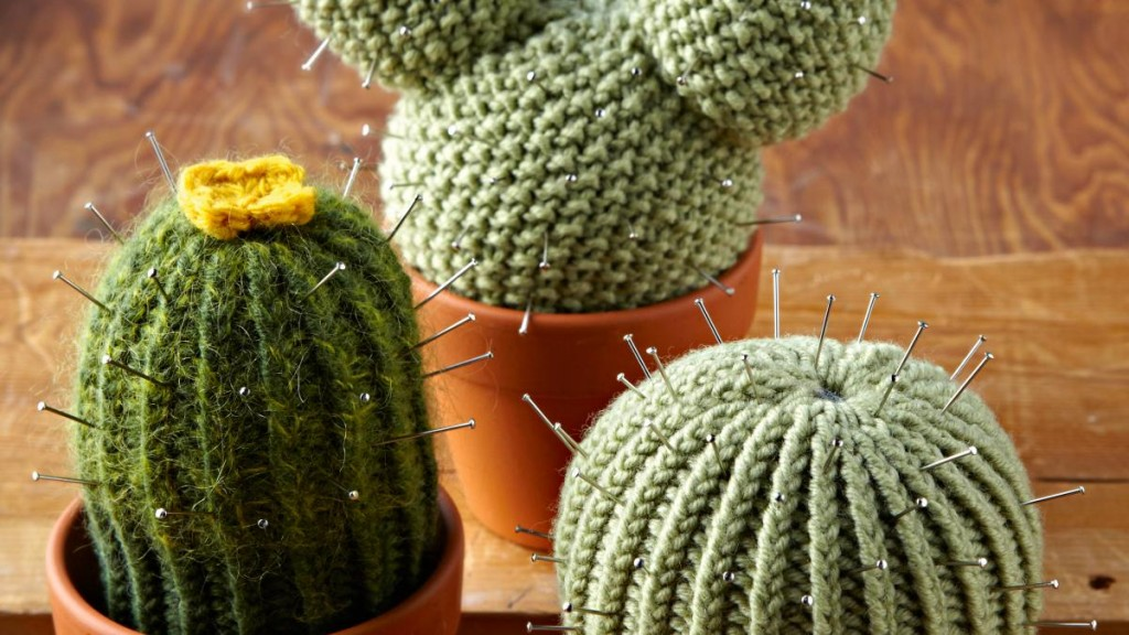 Knitted-cactus-1024x576.jpg