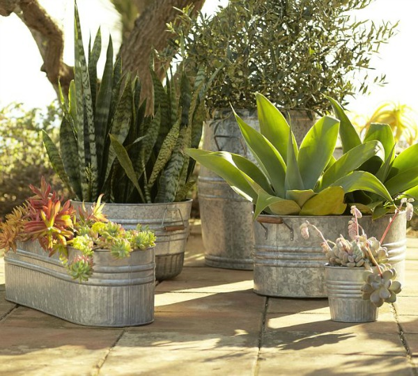 Gorgeous Galvanized Planters