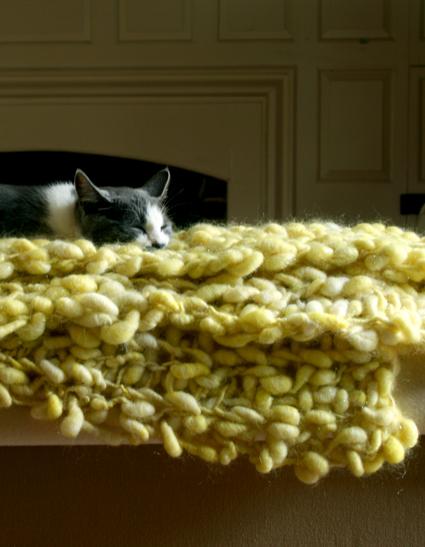 Pixie Dust Lap Blanket