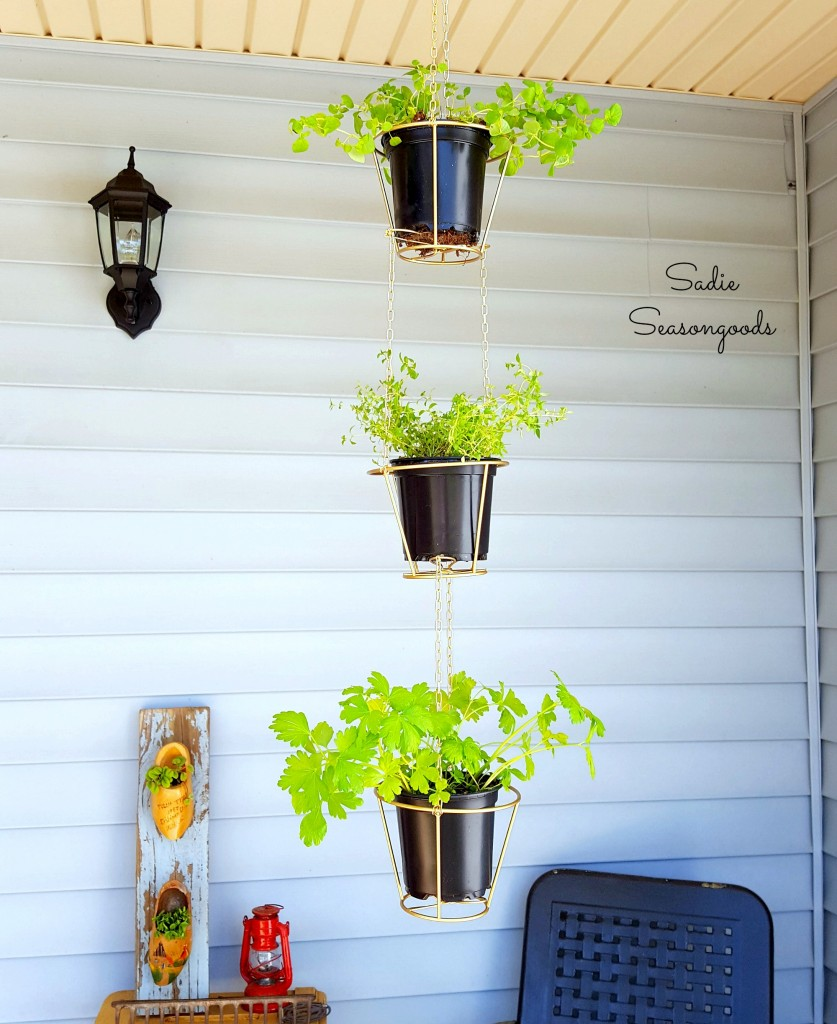 Repurposed Hanging Herb Baskets