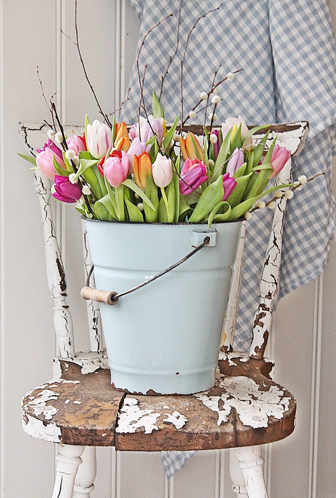 Tulip Bucket