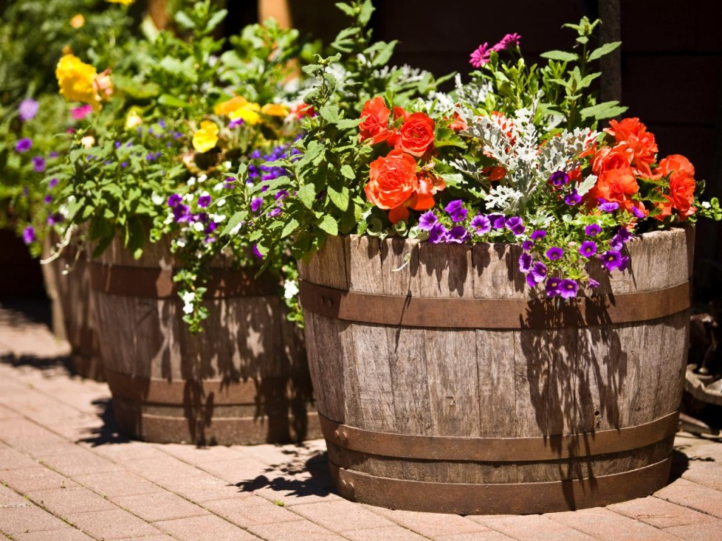 Whimsical Barrel Planter