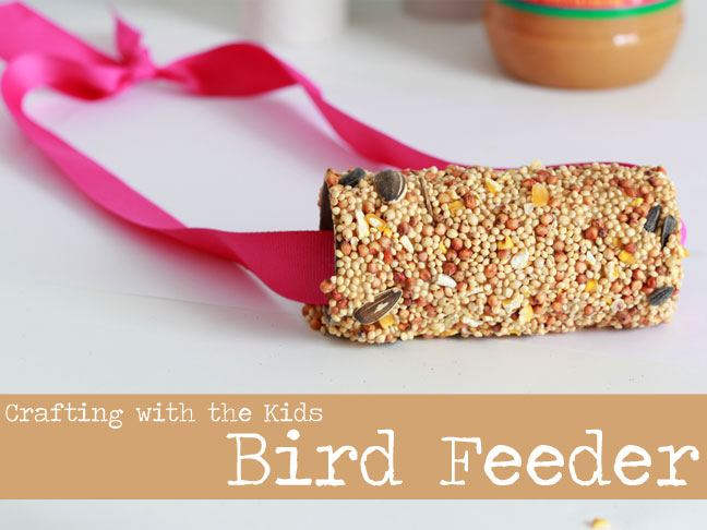 Cardboard Tube Bird Feeder