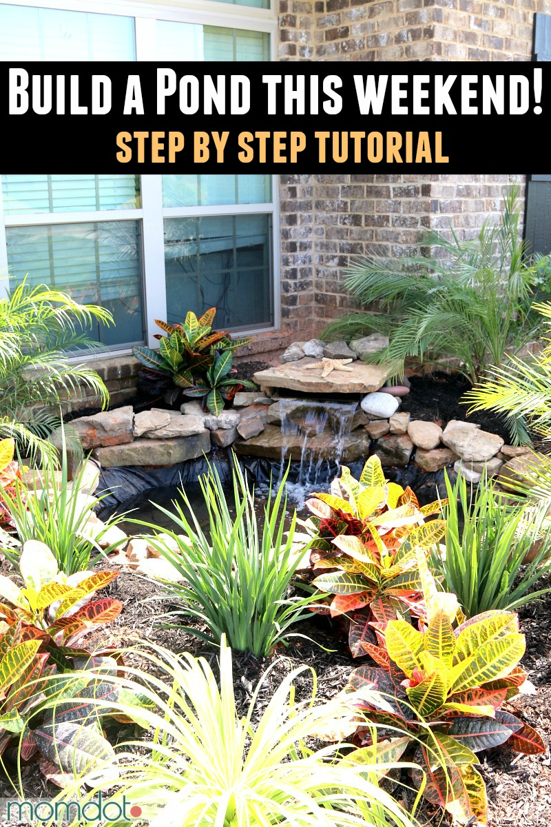 Front Yard Pond Ideas Part - 32: DIY Front Yard Pond