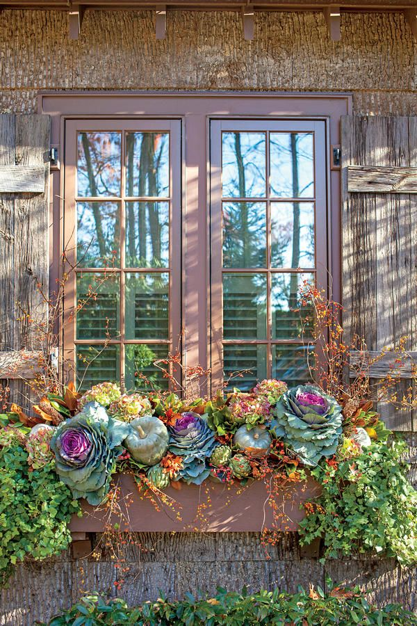 Transitional Window Box Fabulous Fall Decorating Ideas