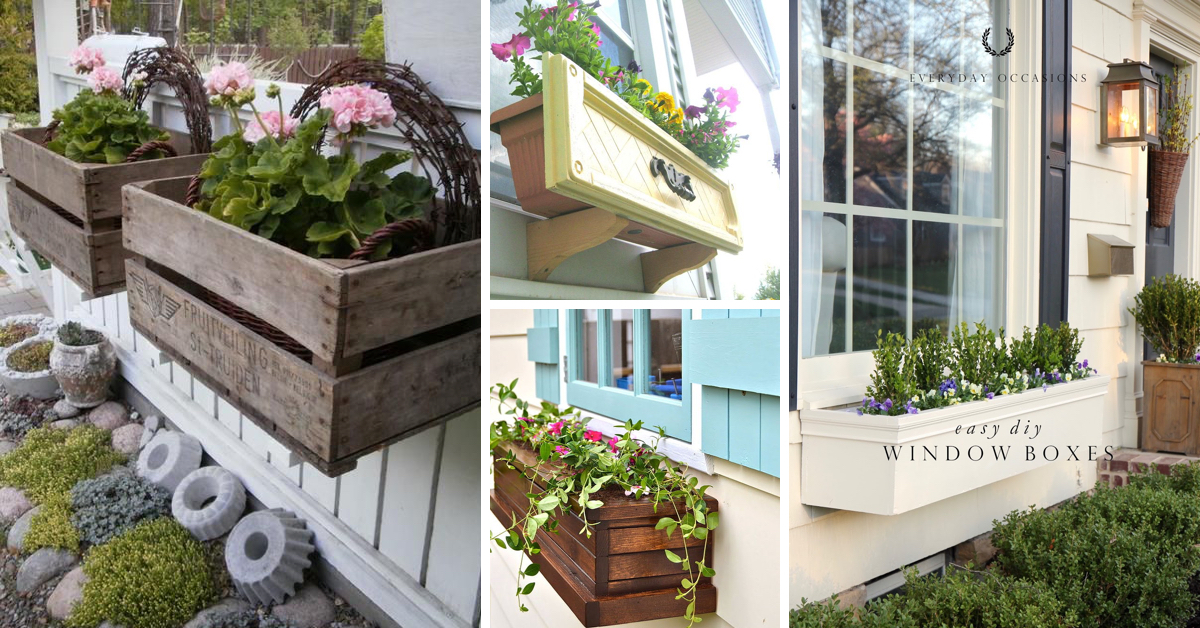 20 Gorgeous Window Box Ideas Adding Floral Magnificence To Your Home