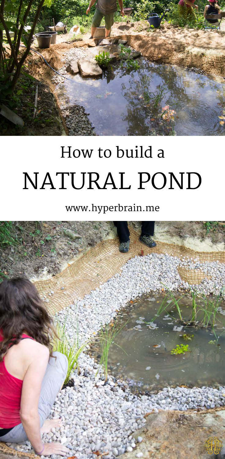 20 innovative diy pond ideas letting you build a water for How to build a koi pond on a budget