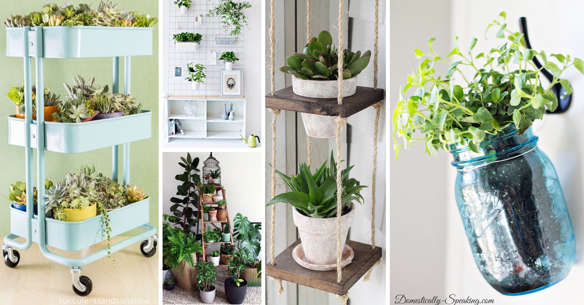 20 Marvelous Indoor Garden Ideas Combating Lack Of Space Or Harsh Weathers!
