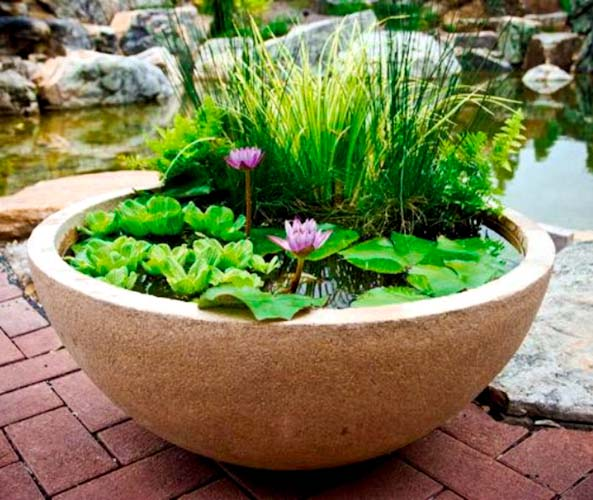 20 Innovative Diy Pond Ideas Letting You Build A Water Feature From Scratch