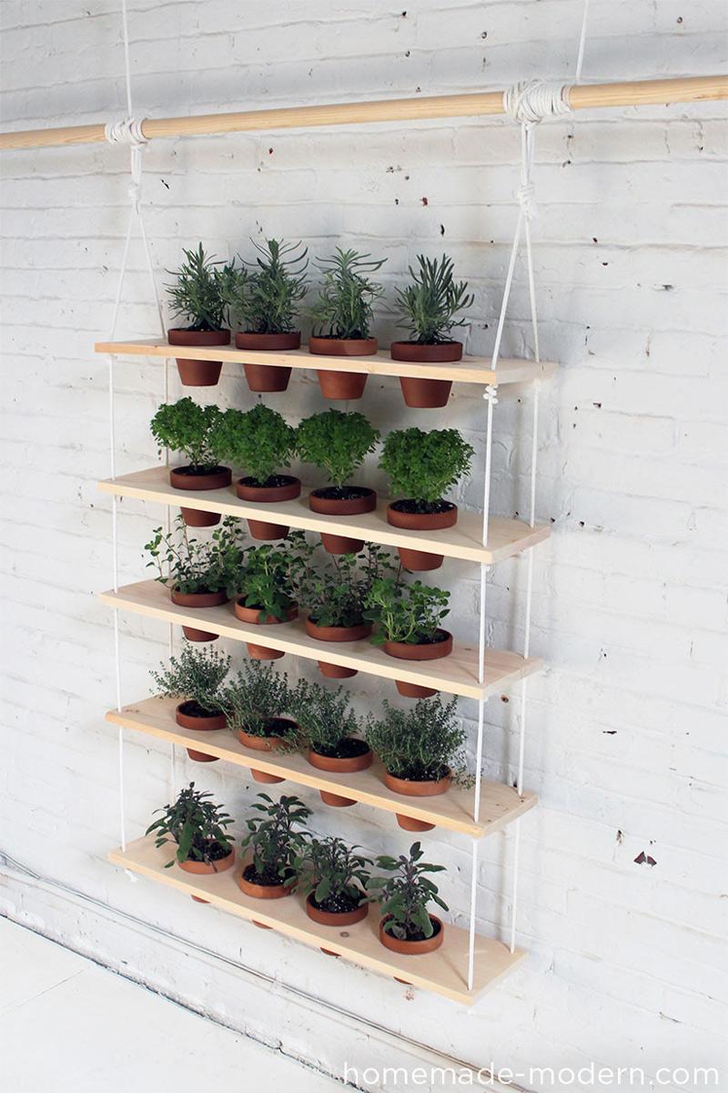Mur de plantes en pot