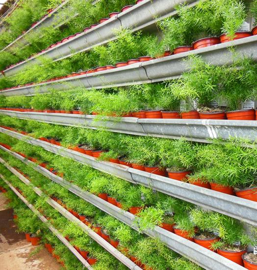 Recycle Gutters Vertical Garden