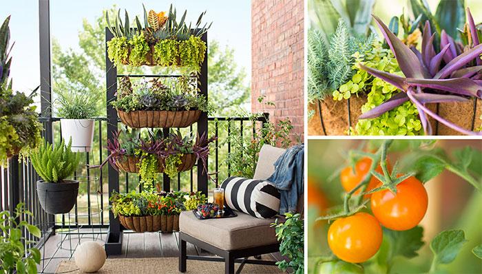 Jardin avec balcon petit espace