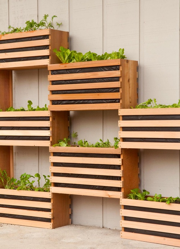 Space-Saving Vertical Vegetable Garden