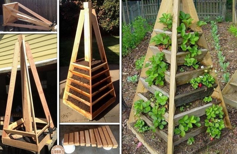 Jardinière Pyramide Verticale