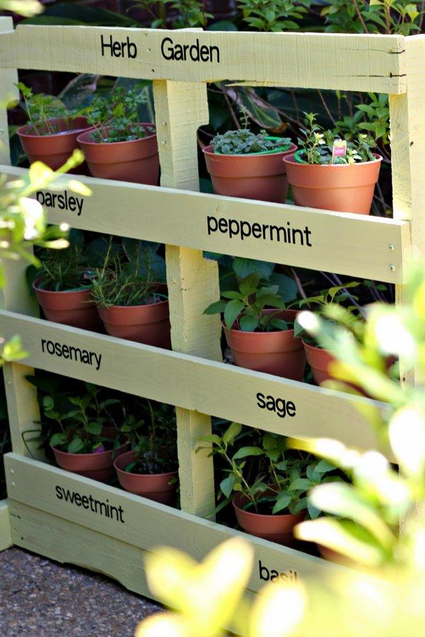 Jardin vertical de palette en bois