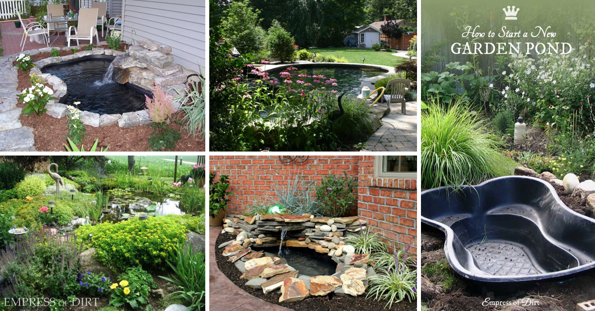 20 innovative diy pond ideas letting you build a water for Small garden fish pond designs