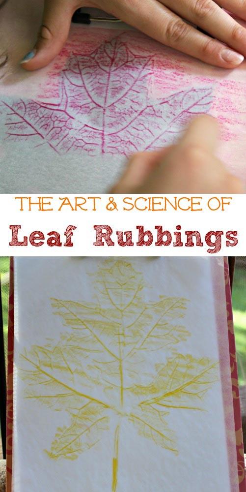 Leaf Rubbing Activity