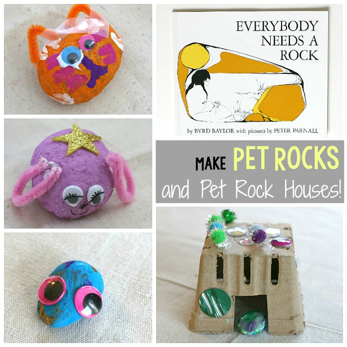 Pet Rocks and Pet Rock Homes