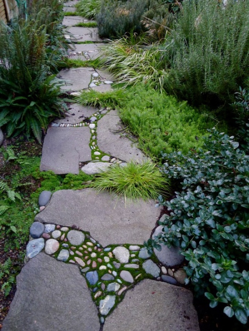 Stones and Grass Path