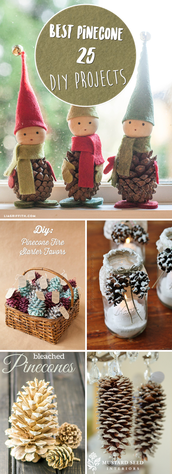 20 Pinecone DIY Projects Making Fall a Thing of Rustic Natural Beauty!