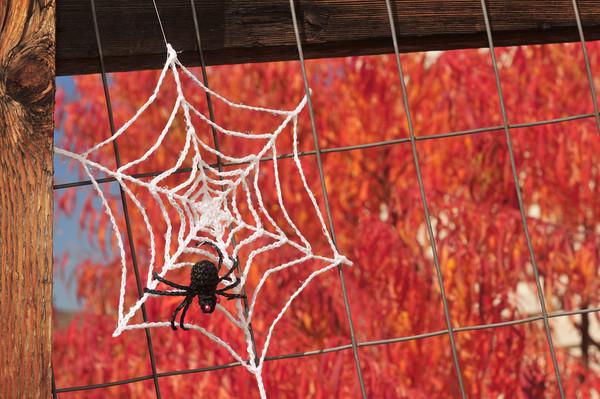 DIY Spider Web Crochet