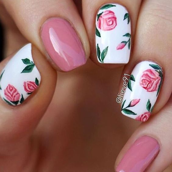 Rose Flowers and Leaves on White